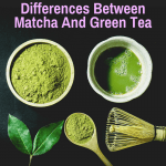 Differences matcha vs green tea