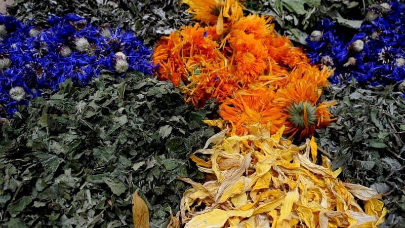 herbs to use in tea bath