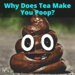 Why Does Tea Make You Poop