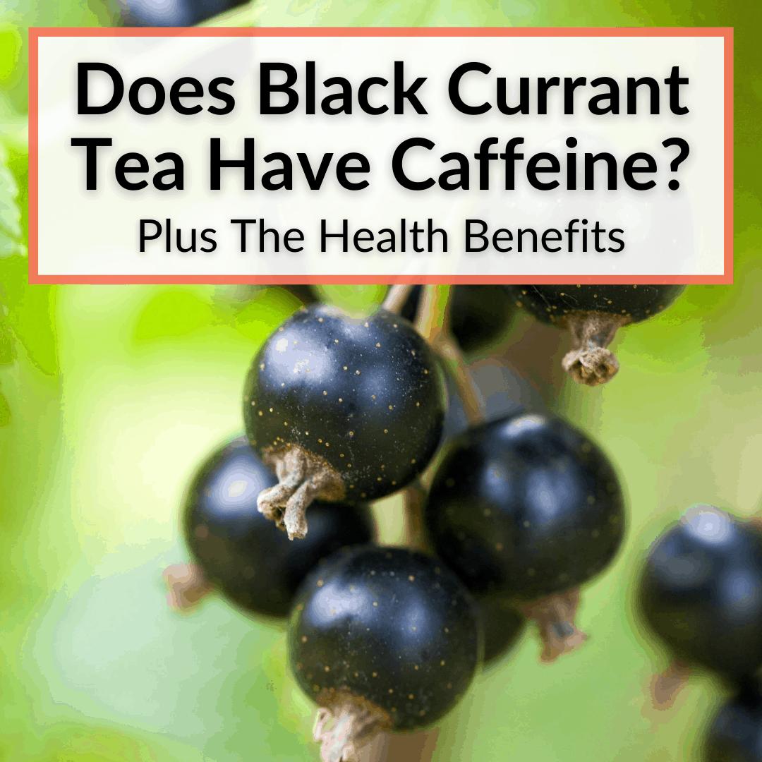 Does Black Currant Tea Have Caffeine