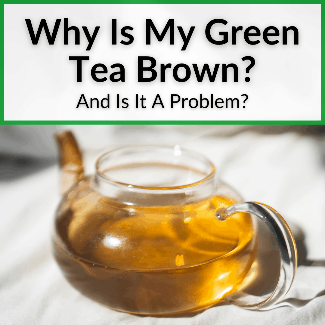 Why Is My Green Tea Brown